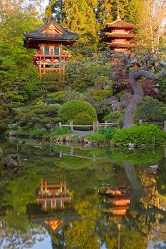 Beautiful. Japanese tea Garden, San Francisco Book on www.travallia.com for less! A different way to think about travel!