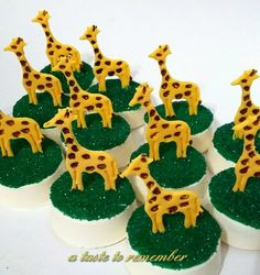Giraffe or safari themed chocolate covered oreos