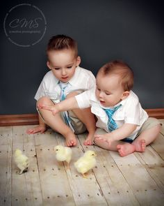easter photography with baby chicks -