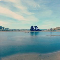 Karitane, Dunedin, New Zealand💦❤💦 All Things New, Old Things, Free Stories, New Zealand Travel, Beach Fun, Nature Pictures, Old Houses, Kiwi, Beaches
