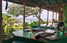 7 Day Relax & Reconnect With Nature Yoga & Meditation Retreat
