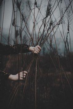 Peace, love, silence, introvert, solitude, regeneration, quiet