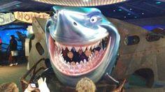 Quem se lembra deste tubarão?