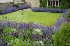 Modern Landscape Design, Garden Landscape Design, Modern Landscaping, Garden Landscaping, Formal Gardens, Small Gardens, Architectural Plants, Sloped Garden, Garden Steps