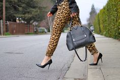 Marc Jacobs Sutton bag and leopard pants