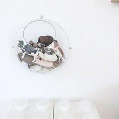 Koziol+Hanging+Display+Orion+plast+kuppel+2stk+halve