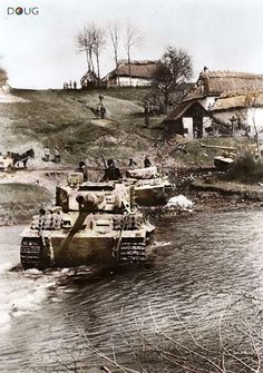 Panzer VI 'Tigers' - Tarnopol, Ukraine - April 1944---steeplechase in the reverse direction