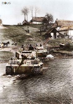 Panzer VI 'Tigers' - Tarnopol, Ukraine - April 1944---steeplechase in the reverse direction