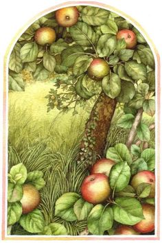 Valerie Greeley - A is for Apple.jpg