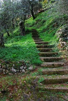 On the stairway to perfection, we only can take one step at a time now matter how long it takes...Pietrasanta, Tuscany, Italy