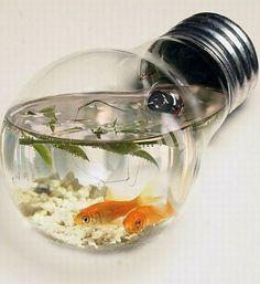 Fish Tank Light Bulb