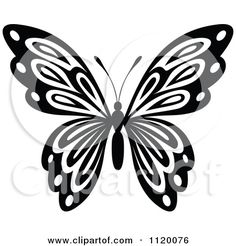 Black And White Butterfly Clipart Panda Free Clipart Images