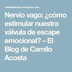 Nervio vago: ¿cómo estimular nuestra válvula de escape emocional? – El Blog de Camilo Acosta