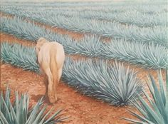 Artist Portfolios - Explore original fine art paintings, sculptures, photography & more from hundreds of contemporary artists from around the world. Agaves, Agave Azul, Mexican Artists, Nyc, Artist Portfolio, Artist Profile, Contemporary Artists, Sculptures, Around The Worlds