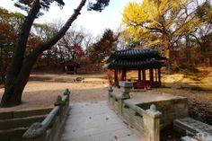창덕궁[Changdeokgung Palace Complex] - 존덕정과 펌우사