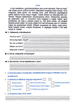 Bakné Moldoványi Anikó Szövegértés könyvéből, 1 oldalasra átdolgozva Math For Kids, Kids Education, Biology, Worksheets, Language, Coding, Teacher, Writing, School