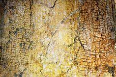Unaciertamirada textures 108, photo by una cierta mirada on Flickr