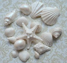 Silicone Mould SEA SHELLS and Starfish for by MadeItInHome on Etsy, $22.00