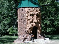 Tree Houses For Adults  -