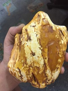 Amber stone Amber Beads, Amber Jewelry, Crystals And Gemstones, Stones And Crystals, Amber Alert, Rock Rock, Amber Stone, Rocks And Gems, Opals