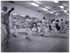 Rokah Karate is one of the best karate classes in Los Angeles. Mma Classes, Karate Classes, Karate School, Combat Sport, Mixed Martial Arts, Learning, Concert, Schools, Popular