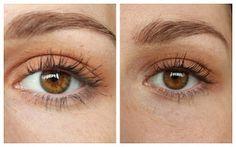 Anastasia Beverly Hills: Modern Renaissance Palette, Burnt Orange, Eyes, Make Up, Eyeshadow, Lidschatten