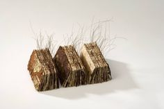 Wei Lin Yang. Between the Pages. Artists Books