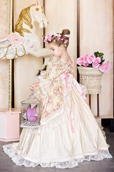 Princess Rose Floral Victorian Inspired Gown Dress