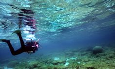 Photo about Woman scuba diver returning from shore dive in Utila, Bay Islands, Honduras. Honduras, Scuba Diving Lessons, Diving School, Affordable Vacations, Diving Course, Koh Tao, Africa Travel, Central America, Adventure Travel
