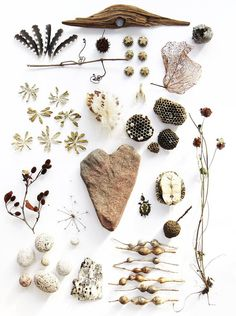 Seeds, pod, stone and sticks - nature's delight courtesy of Harriet Goodall #natural #style ♥️