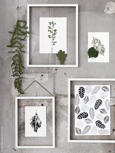Autumn-Inspired IKEA Hacks Prints of leaves in glass frames. To make these: One option is potato stamps which carves out a pattern of a raw potato, dipped in paint and press motif on paper or fabric. The other way is to paint and print directly from a leaf, it becomes very vivid and effective. Here they are framed with just a simple white RIBBA wooden frames without the backing.