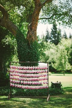 Colorful Vineyard Wedding in Lodi, California  Read more - http://www.stylemepretty.com/2014/03/17/colorful-vineyard-wedding-in-lodi-california/