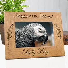 Adopted Adored Rescued Bird Picture Frame