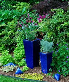 I want a big cobalt blue urn in my garden.