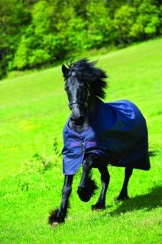 Amigo XL Heavy Turnout available at HorseLoverZ, the #1 place for horse products and equipment. TheAmigoXL Heavyweight Turnout Rug. Designed for the bigger built $189