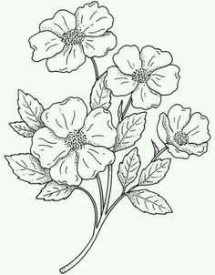 Trendy embroidery flowers pattern coloring pages ideas Trendy embroidery flowers pattern coloring pages ideas Pattern Coloring Pages, Flower Coloring Pages, Colouring Pages, Coloring Books, Embroidery Flowers Pattern, Flower Patterns, Embroidery Designs, Embroidery Stitches, Machine Embroidery