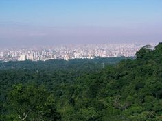Vista de são paulo cantareira - Serra da Cantareira – Wikipédia, a enciclopédia livre