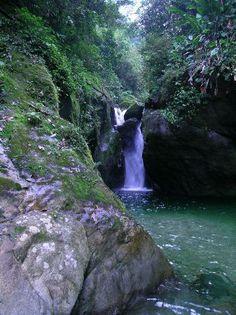 The Waterfalls in Pico Bonito National Park, Honduras