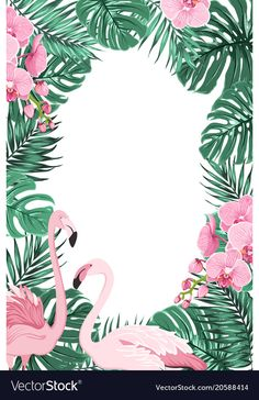 Tropical jungle rainforest green palm tree monstera leaves, orchid phalaenopsis … – Gardening for beginners and gardening ideas tips kids Pink Flamingo Party, Pink Flamingos Birds, Flamingo Birthday, Flamingo Art, Adobe Illustrator, Flamingo Wallpaper, Hawaiian Party Decorations, Tree Templates, Tropical Party