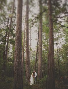 Searching for wedding tips? Wedding Photography for wedding tips? Wedding In The Woods, Forest Wedding, Woodland Wedding, Rustic Wedding, Elegant Wedding, Perfect Wedding, Dream Wedding, Wedding Day, Wedding Bells