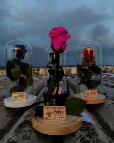 🌟 Forever Roses By Night 🌟 Infinity Roses 🌟  #lastsforever #roses #roseslover #flowershots #flowers #flowerlovers #love #roseonstem #instamoment #night #instanight #floristshop #thessaloniki #anthos_theartofflowers  Για περισσότερες πληροφορίες και διαθεσιμότητα προϊόντων στείλτε μας προσωπικό μήνυμα 💕 Forever Rose, Flower Art, Table Decorations, Flowers, Instagram, Art Floral, Royal Icing Flowers, Flower, Florals