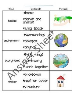 Habitats - Awesome individual and group activities