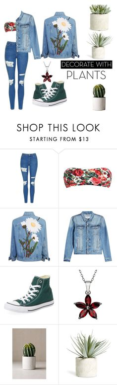 """""""Untitled #126"""" by chiara-hahaha ❤ liked on Polyvore featuring Topshop, Dolce&Gabbana, AMI, Converse, Urban Outfitters, Allstate Floral, plants and planters"""