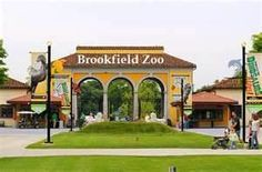 Brookfield Zoo #zootour for How to Outrun a Crocodile With Your Shoes Untied by Jess Keating