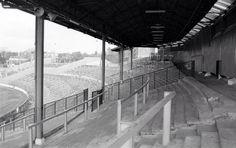1982: The Shed, Stamford Bridge...