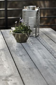 ATT BYGGA SIG ETT DRÖMBORD i cement | @my casa Cement, Plants, Outdoor, Inspiration, Outdoors, Biblical Inspiration, Plant, Outdoor Games, The Great Outdoors