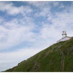 【yokoyamahirotoshi】さんのInstagramをピンしています。 《#120mmfilm #mediumformat  #filmphotography #filmphotographic #artfilm #shootfilm #thefilmcommunity #analog #analogfeatures #instagram #instagramjapan #tokyocameraclub #streetphotography #landscape #snapshot #beach #sea #sky #lighthouse  #フィルム #海 ##ビーチ #空 #灯台》