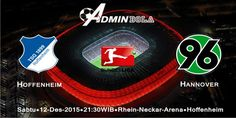 Prediksi Bola Hoffenheim vs Hannover 12 Desember 2015