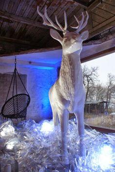 bestseller#deer#accessories