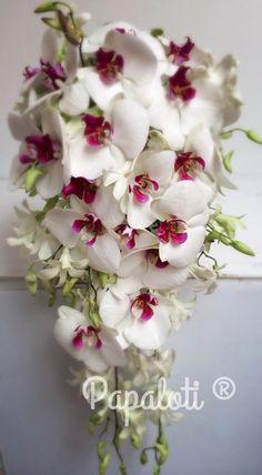 Ramo de orquídeas phalenopsis